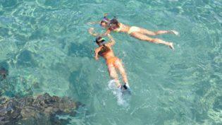 Snorkeling 1551757